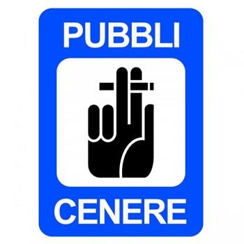 Il logo del Pubblicenere