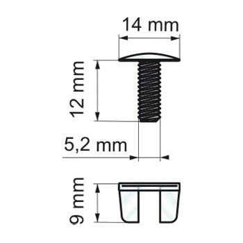 Forma e misure delle viti in plastica trasparente (RIVPS1412280)